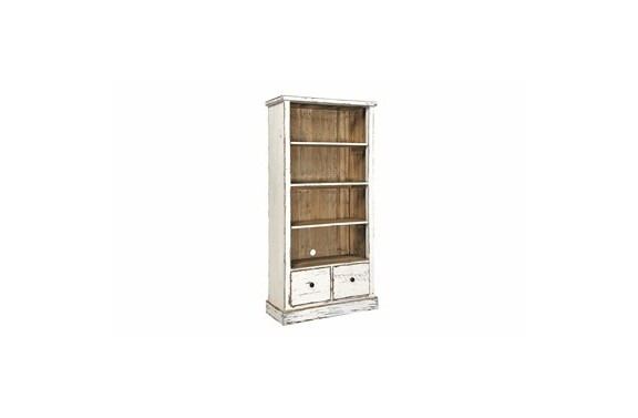 Reclaimed Painted Bookcase