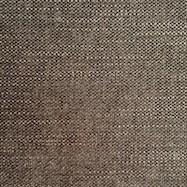 Picabia Mole