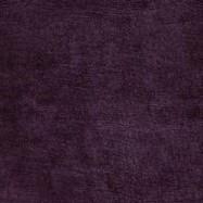 Borghese Velvet Crocus
