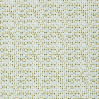 Dot Dot Kiwi
