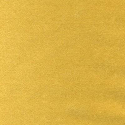 Velvet Primrose