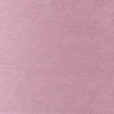 Velvet Varese Rose